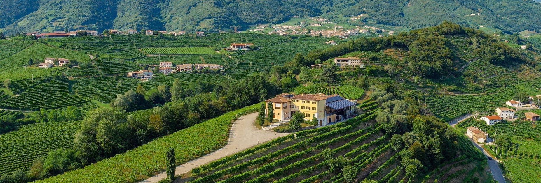 Top-Prosecco aus Valdobbiadene