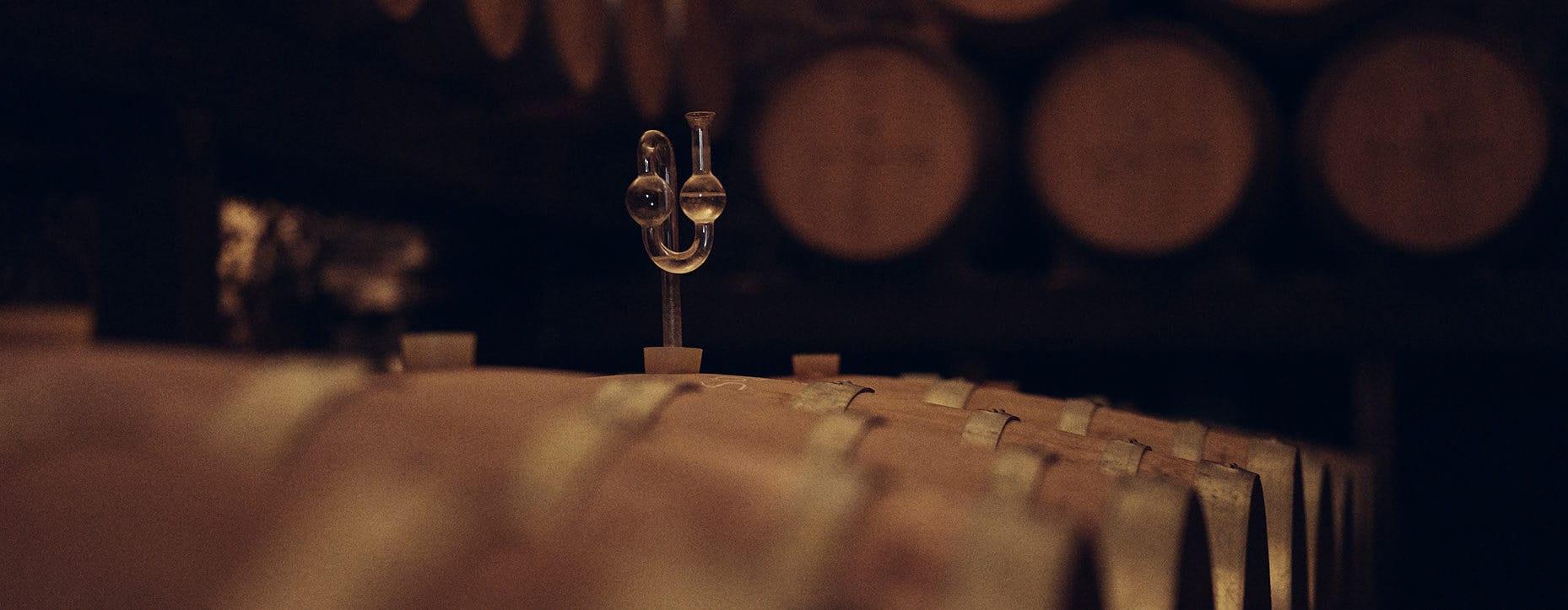 Alkoholische Gärung